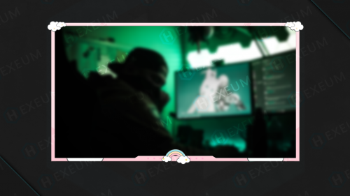 cute webcam overlay