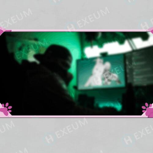cat webcam overlay