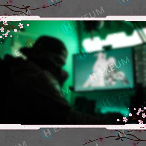 japanese cherry blossom webcam overlay