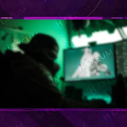 Vibrant Webcam Overlay