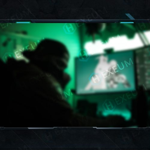 Blue Webcam Overlay
